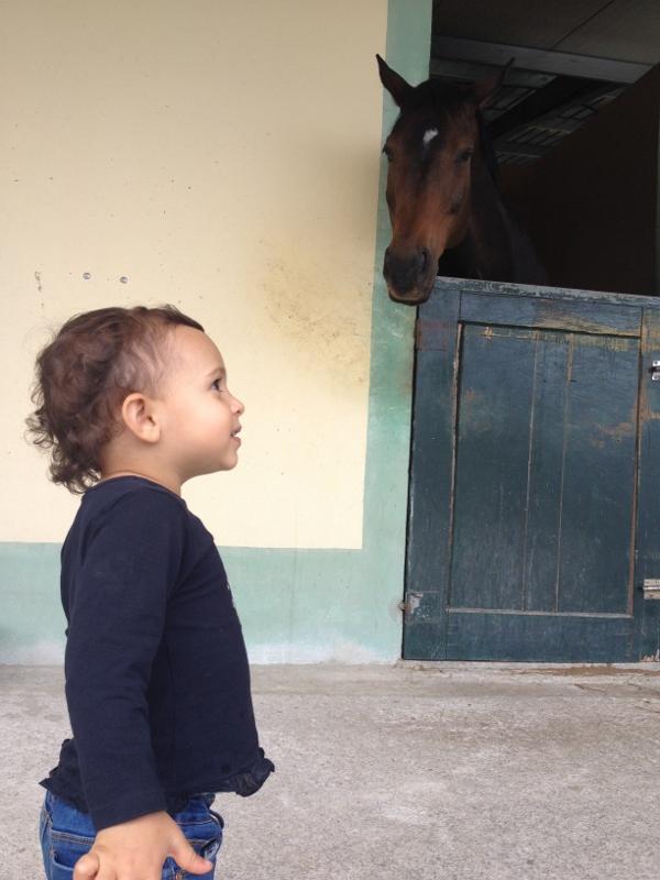 aniversário no centro equestre