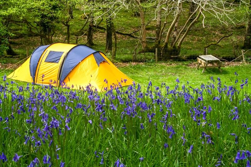 acampar, ou talvez não!